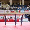 Iran gains 5 medals at 2018 World Poomsae C'ships